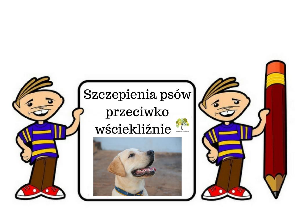 Obowiązkowe szczepienie psów przeciwko wściekliźnie w Zbytkowie
